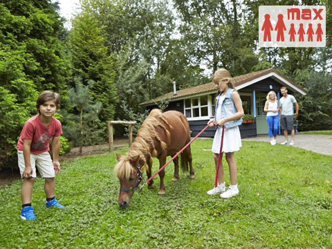 6-Personen Mobilheim/Chalet (max 2 volw.) Buffalo Ranch House met pony