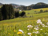 Ferienparks in Bayern