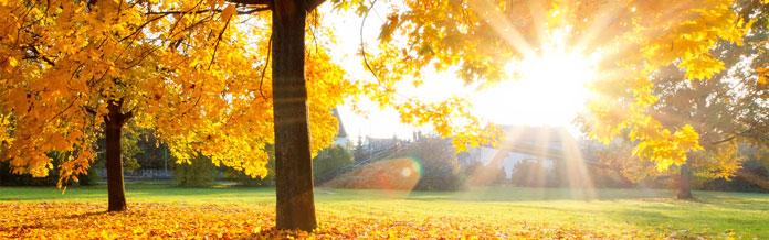Ferienparks Herbstferien