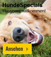Ferienhaus Hund gestattet