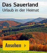 Sauerland Ferienhaus Angebot