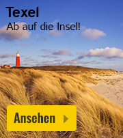 Texel Ferienhaus Angebot