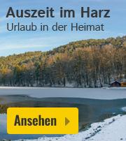 Ferienhaus im Harz