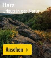 Ferienparks im Harz