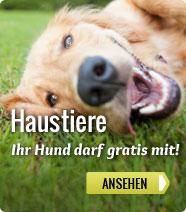 HaustierSpecials: Haustiere dürfen gratis mit!