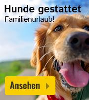 Ferienpark mit Hund