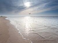 Urlaub am Meer in Julianadorp aan Zee
