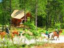 Huttopia Village Lanmary - Périgord