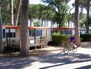 Gustocamp Camping Cisano San Vito
