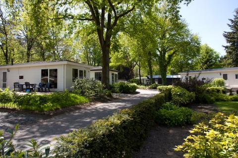 Droompark Hooge Veluwe