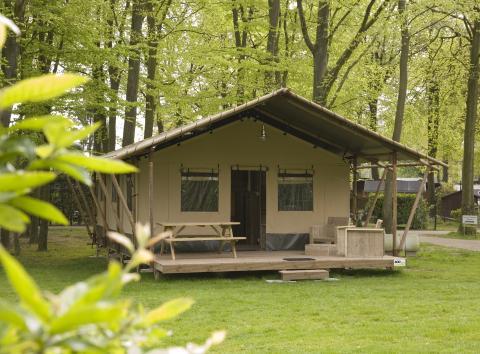 6-Personen Möbliertes Zelt Woodlodge